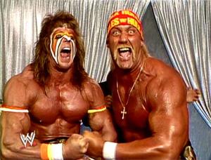 Hulk Hogan Warrior Feud