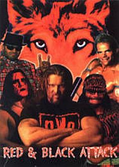 1999 wwe wolfpack sting wallpaper - photo #42